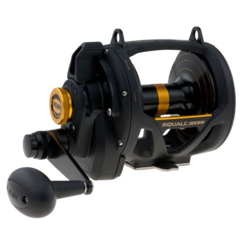 Penn 30VSW Squall Lever Drag 2 Speed Reel